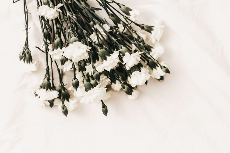 cremation services in Frankton, IN